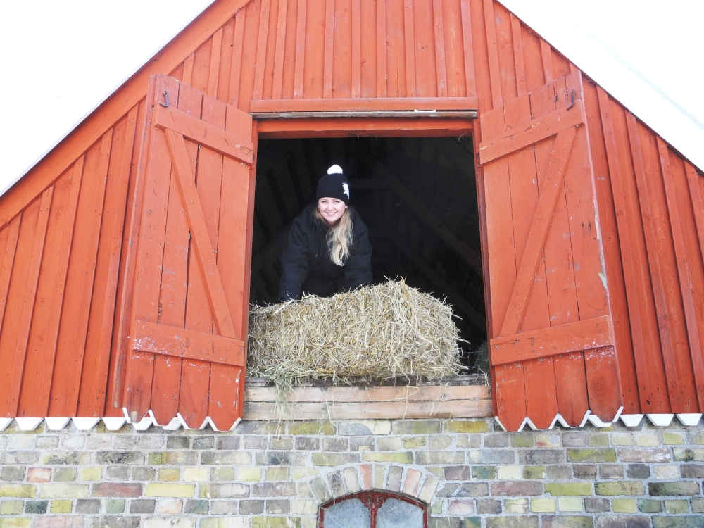 Höloftet på skånegården på Skansen