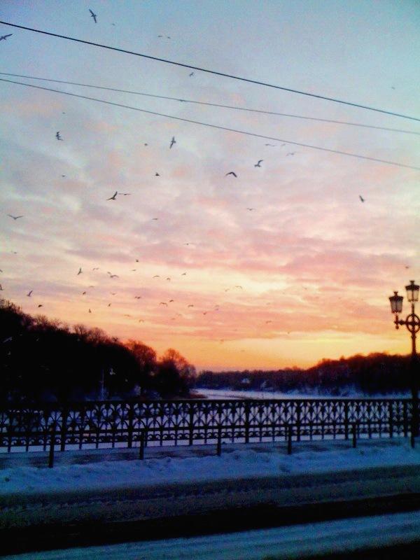 soluppgång på djurgårdsbron